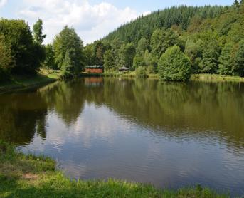 Wunderschöner Angelweiher Steinbach