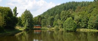 Angelweiher Steinbach